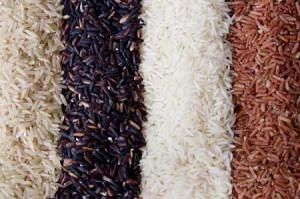 Le riz biologique