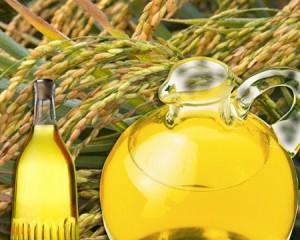 L'Huile de Son de Riz Bio antioxydant naturel puissant bio