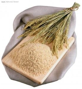 Le riz bio une céréale antioxydante au milles vertus pour la santé